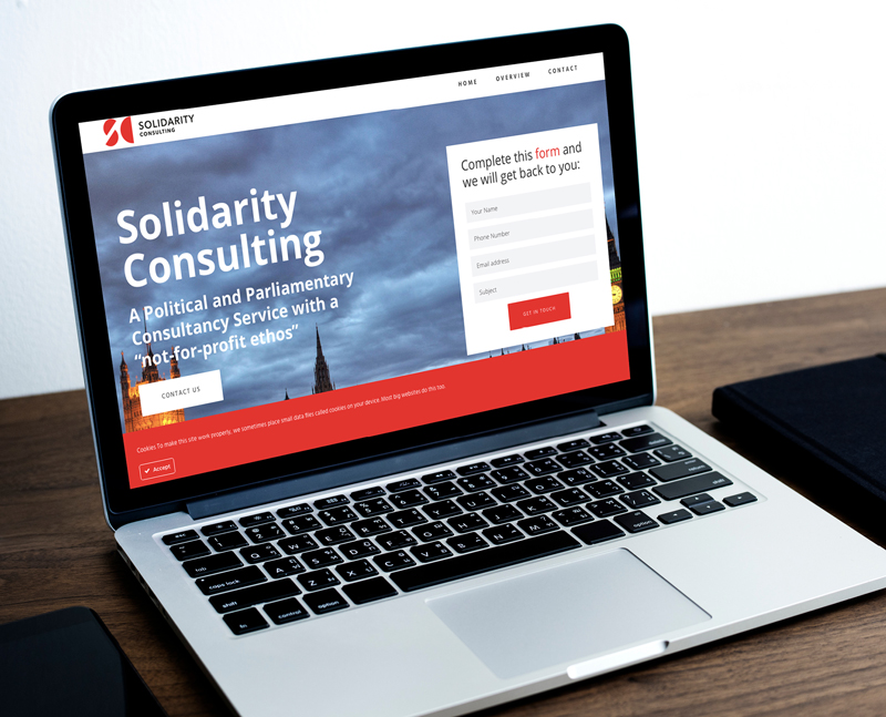 Solidarity Consulting Website Development by Number Violet